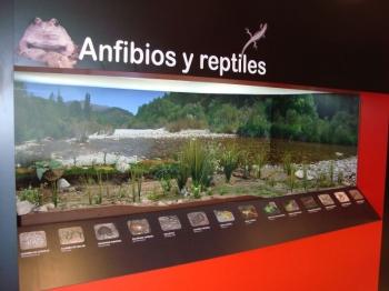 Centro de Interpretación Parque Natural los Calares. Yeste.  Centro