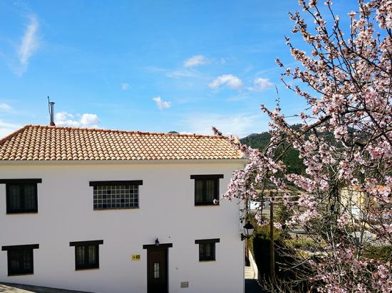 Casa rural el Abuelo Luis Foto fachada