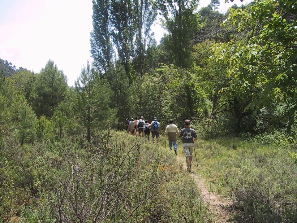 Red de senderos Verdenace. Paterna del Madera.  logo