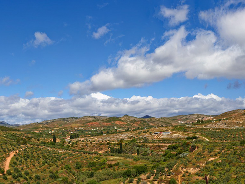 Castillo y mirador de Villares Mirador Villares