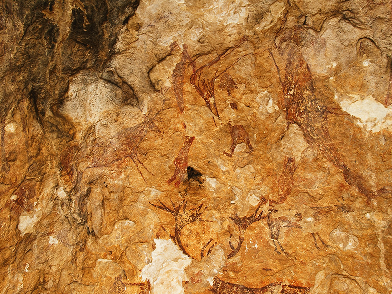 Pinturas Rupestres de Nerpio rupestres