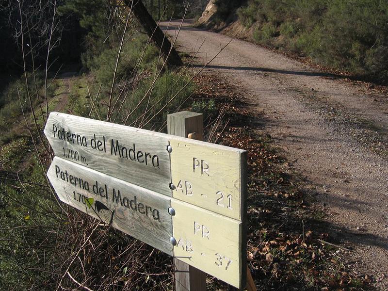 Red de senderos Verdenace. Paterna del Madera.  Red senderos verdenace 2