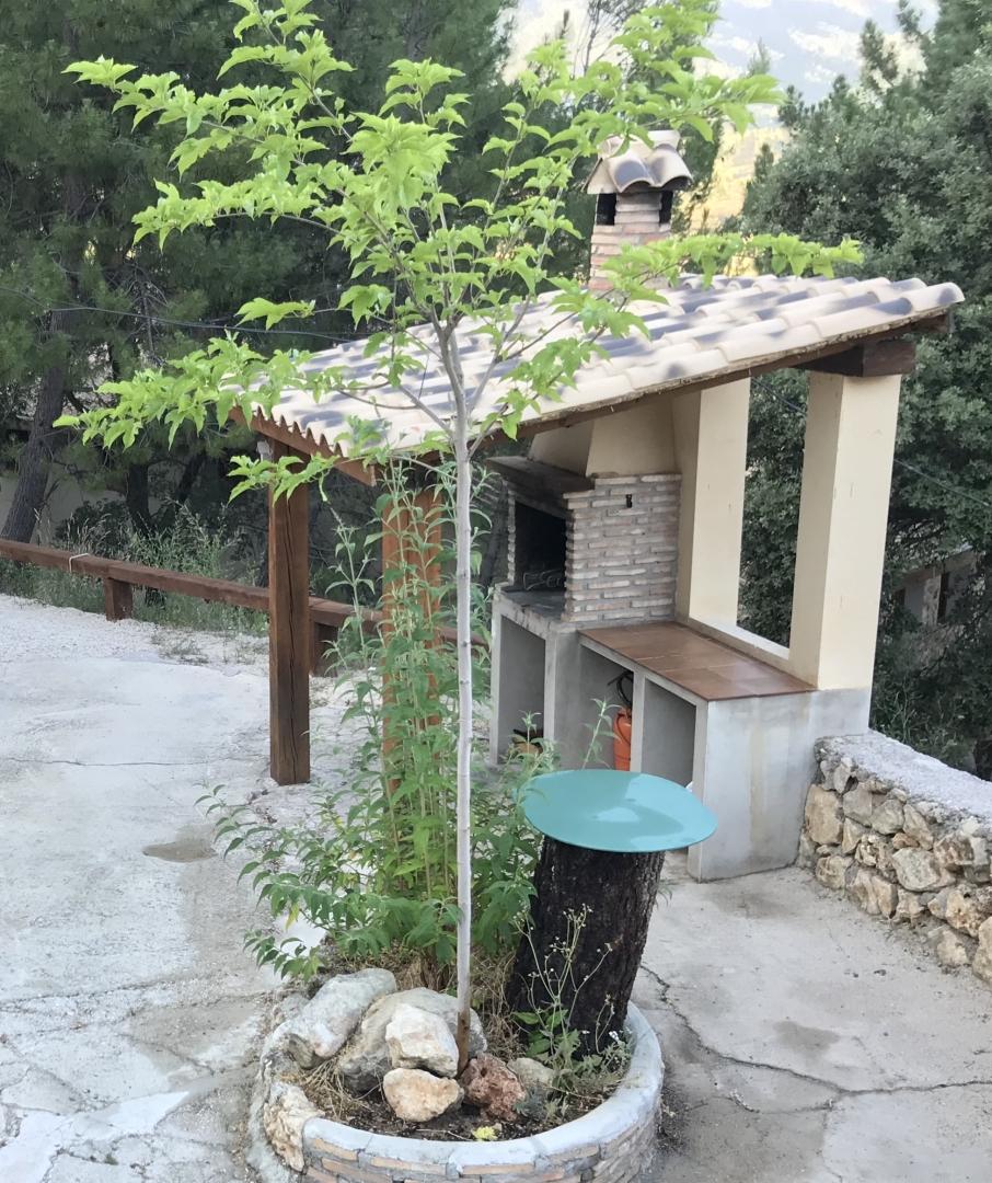 Casa Rural los Chorros del Mundo