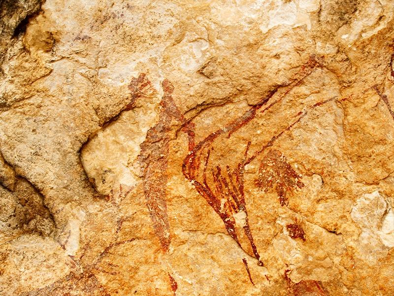 Visita guiada a las pinturas rupestres de Solana de las Covachas Visita guiada pinturas rupestres Solana de las Covachas Nerpio